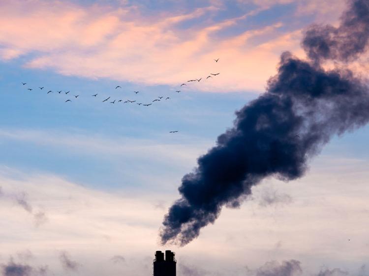 Inquinamento della Terra: un'emergenza più grave del Covid